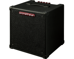 Ibanez Promethean P20 Bass Combo Amplifier_1618