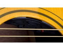 Epiphone Texan 1964 AN Accoustic Guitar_1710