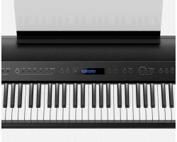 Roland FP-90 Digital Piano black_1830